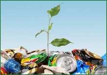 Экология и здоровье человека