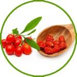 ягоды терезы китайской