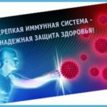 Иммунная система — основной защитник  нашего здоровья!