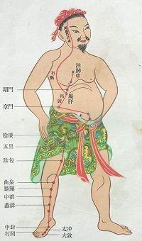 Печень человека - её оздоровление весной по-китайски 2