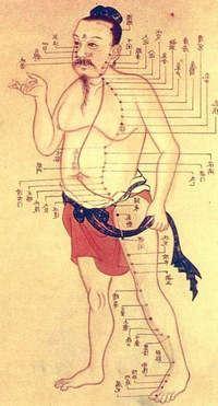 меридиан почек в китайской медицине