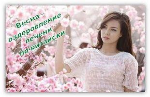 печень человека-её оздоровление весной по-китайски 2