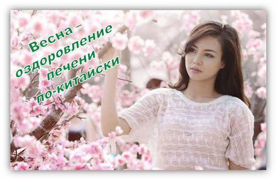 печень человека-её оздоровление весной по-китайски
